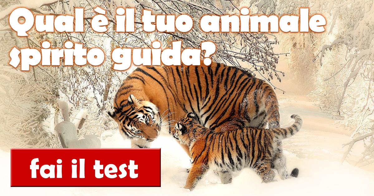 test qual il tuo animale spirito guida scoprilo con